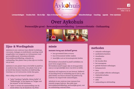 Aykohuis, website